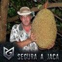 Segura_a_Jaca's Avatar
