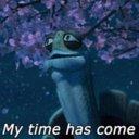 Master Oogway's Avatar
