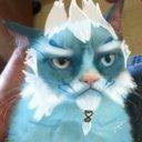 Oreo's Avatar